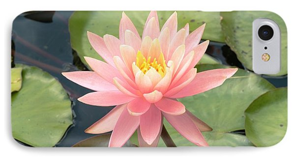 Nymphaea 'sunny Pink' IPhone Case