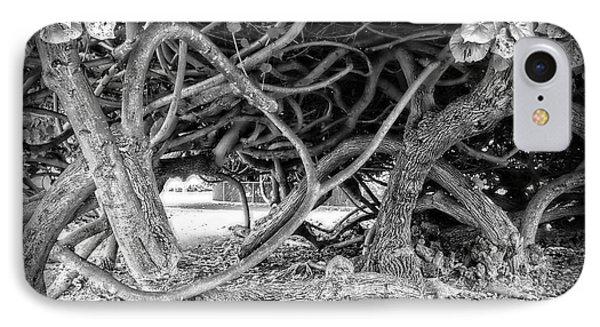 Oahu Ground Vines - Hawaii Phone Case by Daniel Hagerman