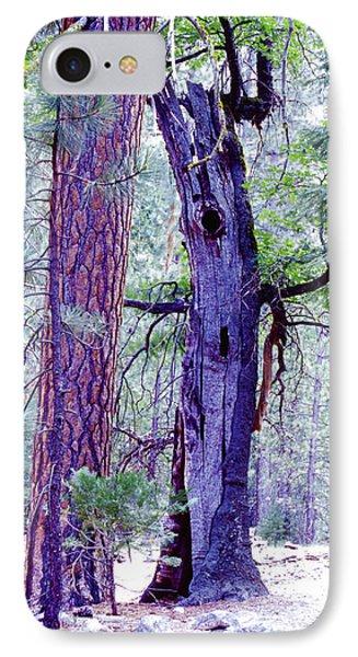 Oak And Ponderosa IPhone Case
