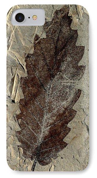 Oak Leaf Fossil IPhone Case by Gilles Mermet