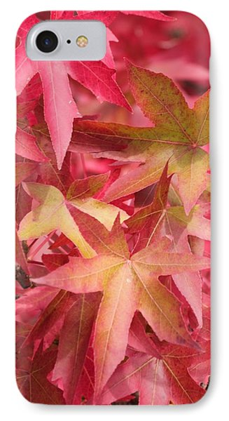 IPhone Case featuring the photograph Oak Leaves In The Fall by E Faithe Lester