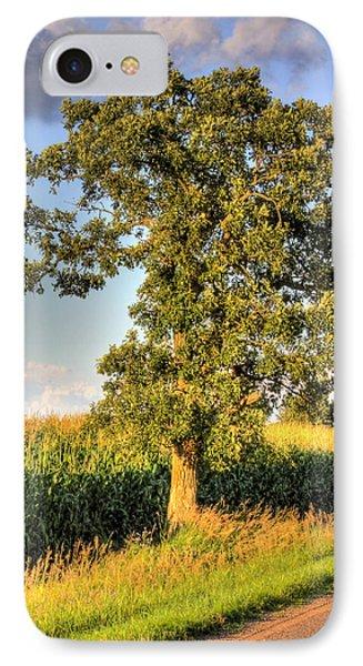 Oak Tree By The Roadside IPhone Case