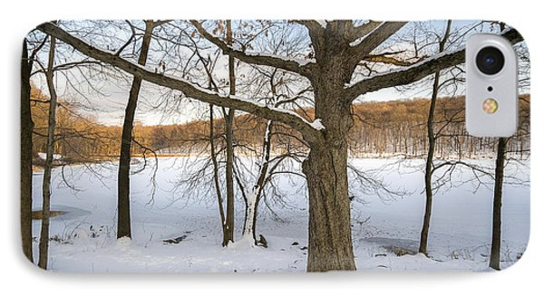 Oak Tree In Snow I IPhone Case by Marianne Campolongo