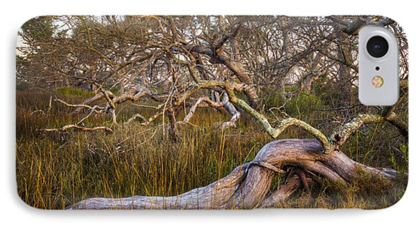 Oak Trees In The Marsh Phone Case by Debra and Dave Vanderlaan