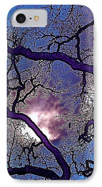 Oaks 11 IPhone Case by Pamela Cooper