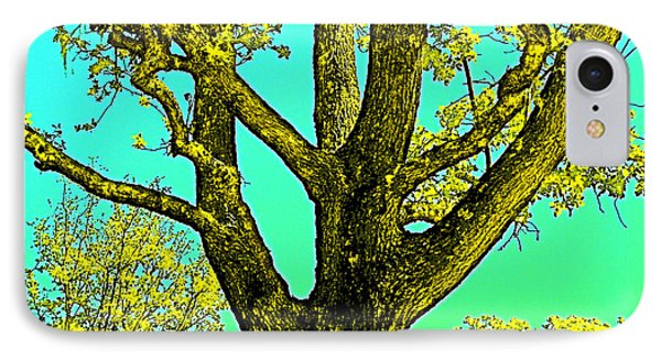 IPhone Case featuring the photograph Oaks 3 by Pamela Cooper