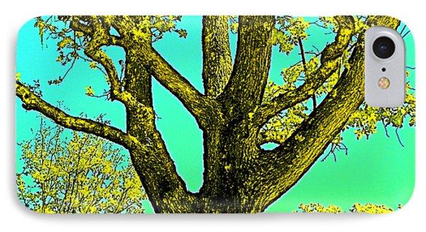 Oaks 3 IPhone Case by Pamela Cooper