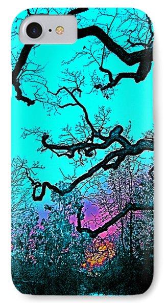 Oaks 4 IPhone Case by Pamela Cooper