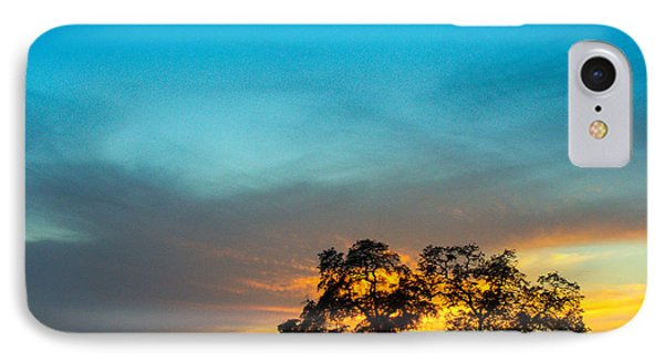 Oaks And Sunset 2 Phone Case by Terry Garvin