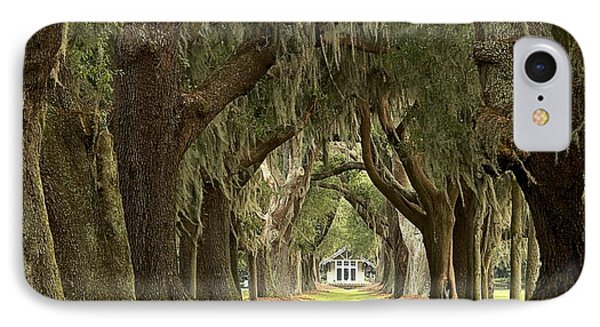 Oaks Of The Golden Isles IPhone Case by Adam Jewell