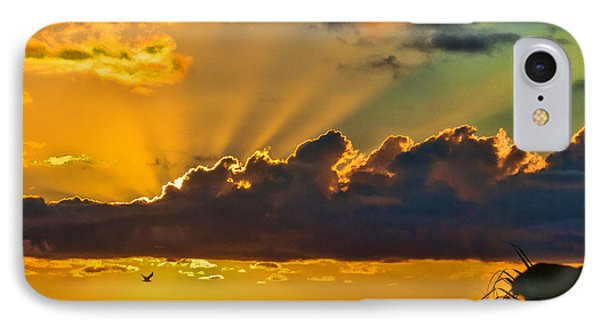 Oceanfront Sunrise IPhone Case by Don Durfee