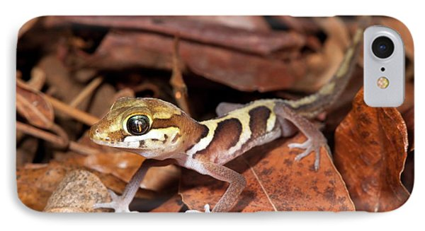 Ocelot Gecko IPhone Case