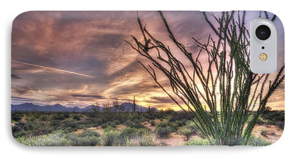 Ocotillo Sunset IPhone Case by Anthony Citro