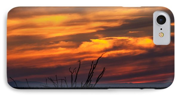 Ocotillo Sunset IPhone Case by Robert Bales
