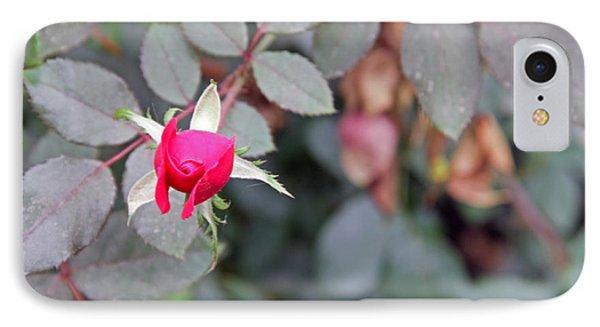 October Bloom IPhone Case