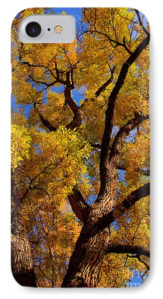 October IPhone Case by James BO  Insogna
