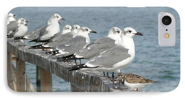 Odd Bird Out IPhone Case by Cindy Croal