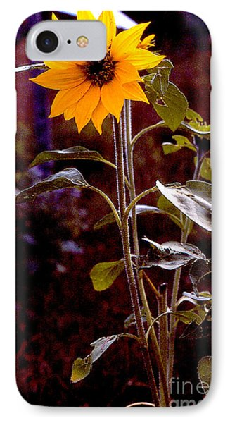 Ode To Sunflowers Phone Case by Patricia Keller