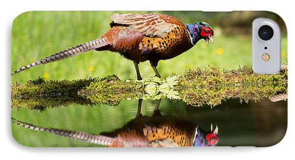 Oh My What A Handsome Pheasant Phone Case by Louise Heusinkveld