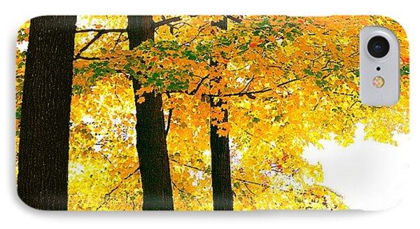 Ohio Autumn IPhone Case