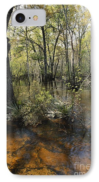 Ohoopee River, Georgia IPhone Case by William H. Mullins