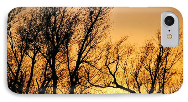 Oklahoma Sunset IPhone Case