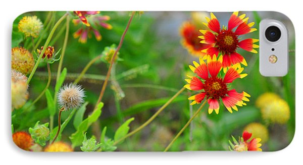 Oklahoma Wildflowers IPhone Case