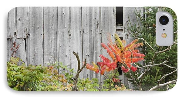 Old Barn In Fall IPhone Case by Keith Webber Jr