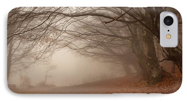 Old Beech Trees In Fog IPhone Case by Jivko Nakev