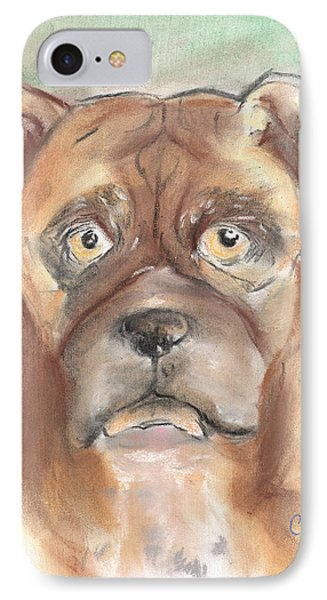 Old Boxer Phone Case by Christine Callahan
