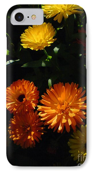 Old-fashioned Marigolds IPhone Case by Martin Howard
