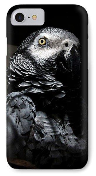 Old Gray IPhone Case by Steve Godleski