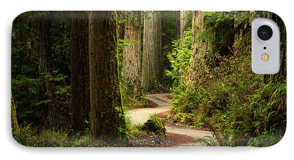 Old Growth Forest Route IPhone Case by Leland D Howard