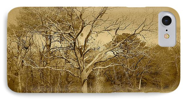 Old Haunted Tree In Sepia IPhone Case by Amazing Photographs AKA Christian Wilson