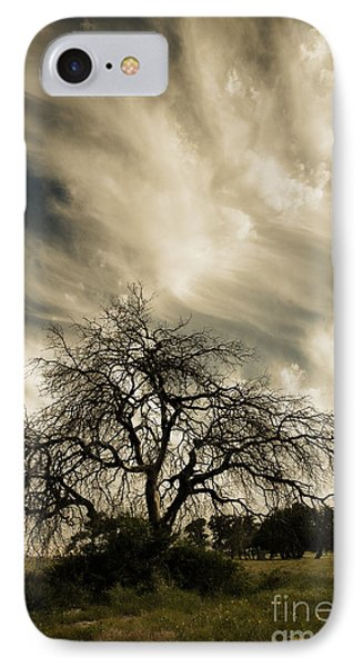Old Oak Tree IPhone Case
