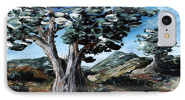 Old Olive Tree Phone Case by Anastasiya Malakhova