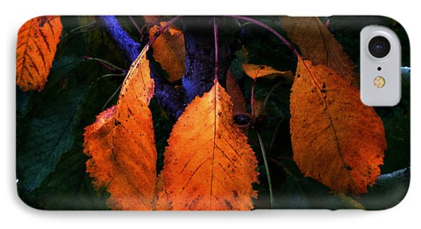 Old Orange Leaves IPhone Case