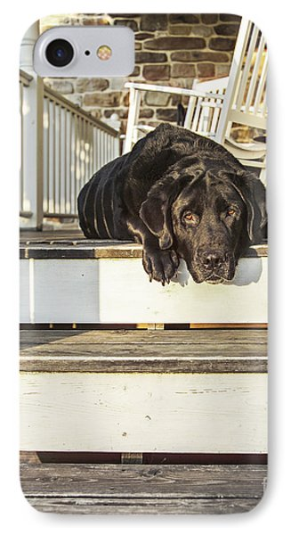 Old Porch Dog IPhone Case