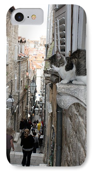 Old Town Alley Cat IPhone Case by David Nicholls