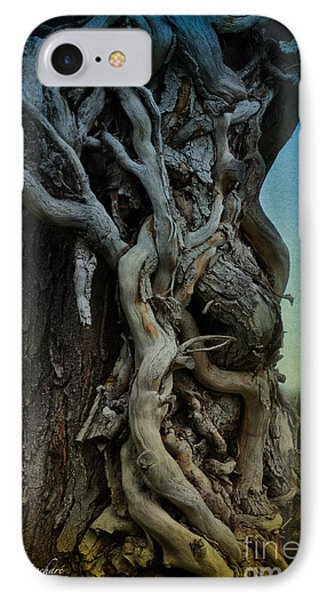 Old Vine Phone Case by Mary Machare