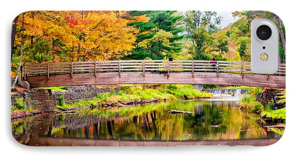 Ole Bull State Park Paint IPhone Case