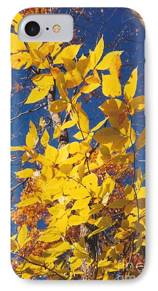 IPhone Case featuring the photograph 'ole Yeller by Jesse Ciazza