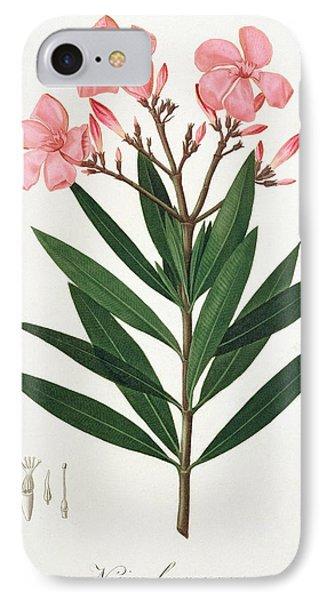 Oleander IPhone Case by LFJ Hoquart
