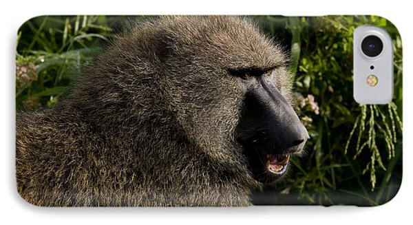 Olive Baboon   #0685 IPhone Case by J L Woody Wooden