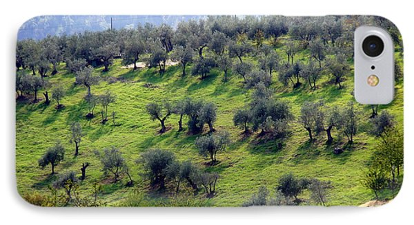 Olive Trees And Shadows IPhone Case by Debi Demetrion