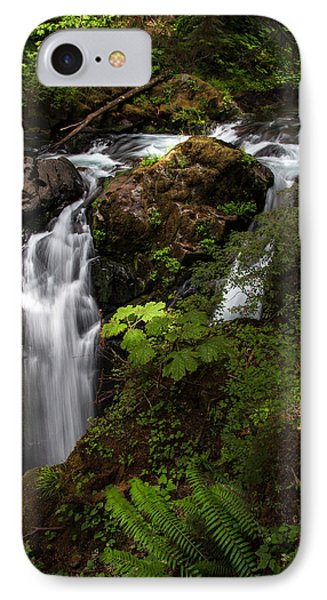 Olympic National Park IPhone Case by Larry Marshall