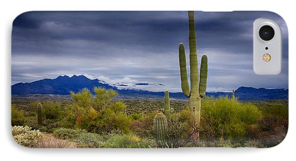 On A Winter's Day In The Sonoran Desert  IPhone Case by Saija  Lehtonen