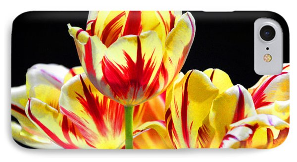 IPhone Case featuring the photograph On Fire by Brian Davis