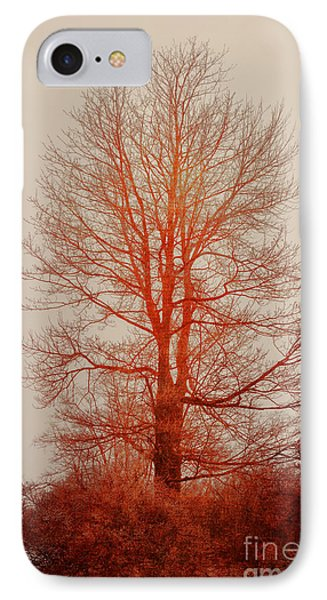 On Fire In The Fog Phone Case by Lois Bryan
