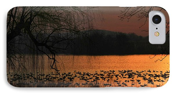 On Golden Pond Phone Case by Lori Deiter